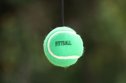 FittBall